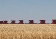 Развитие сельского хозяйства РФ