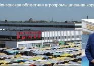 Високосный год Вадима Супикова