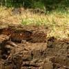 Разыграно право пользования участком недр «Горелище» Земетчинского района Пензенской области