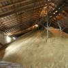 В Каменском районе построят зернохранилище мощностью 100 тонн