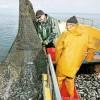 Рыболовецкий бизнес Пензенской области