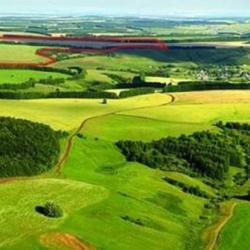 Как грамотно продать земельный участок?