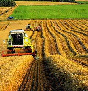 Миллион тонн зерна в Пензенской области