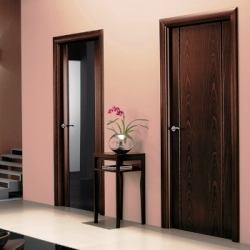 Какие двери выбрать для своего дома